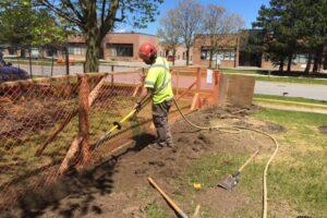 avoiding tree damage during construction