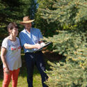 tree management plan consultation
