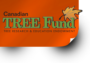 Canadian Tree Fund - Platinum Donor - Four Seasons Tree Care